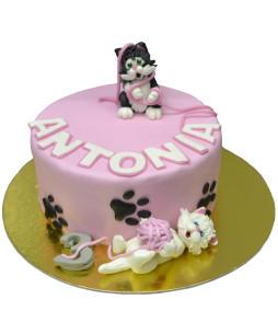 Tort-Pisica-Marie